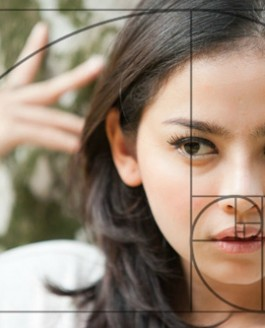 Comment réussir ses images ? : règles de cadrage et de composition